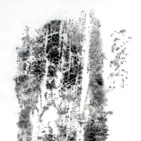 Nolwenn Léonard - Espelho IV