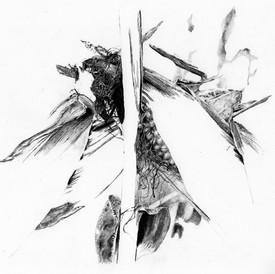 Nolwenn Léonard - Microcosmes