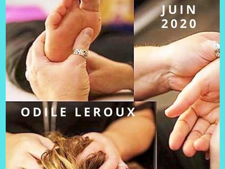 Formations à l'affiche Juin - Juillet 2020