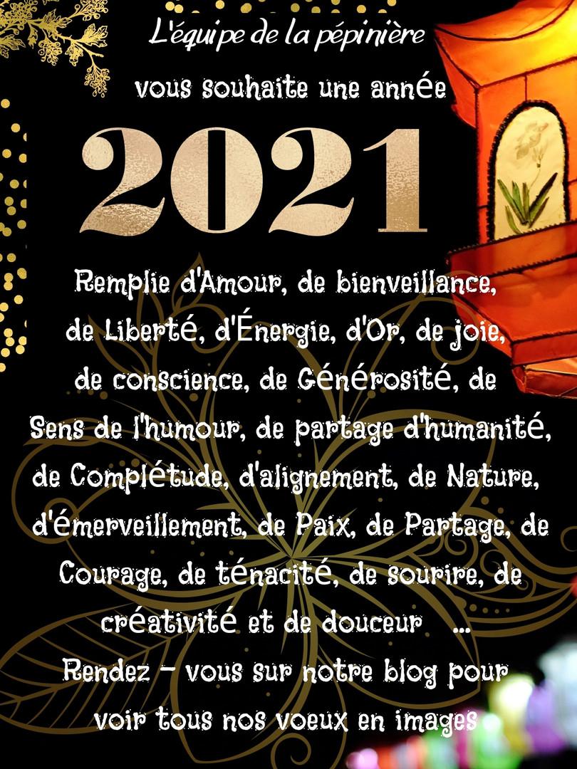 Newsletter - Janvier 2021_page-0008.jpg