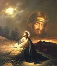 Blog/Lesson Eleven Who Is Jesus? Part Four