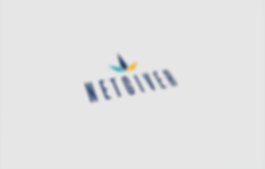 Netgiver-Logo-Mockup.png