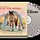 Thumbnail: VINYL + CD + Digital Download