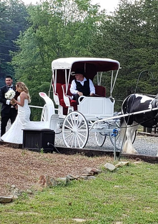 Bride and groom off carriage.jpg
