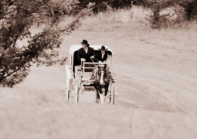 Horse and Carriage 1.jpg
