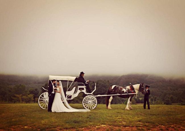 Horse Carriage and Bride-Groom.jpg