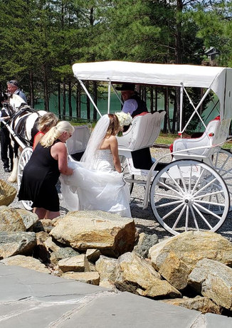 Bride getting on carriage.jpg