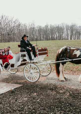 Jesse and Danielle in carriage.jpg