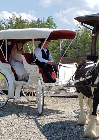 Bride on the carriage.jpg