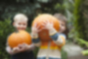 kids-holding-pumpkins.jpg