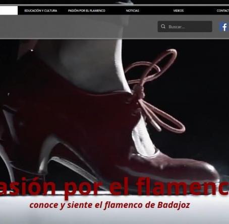 La Diputación de Badajoz lanza una web para aunar a los sectores de flamenco de la provincia