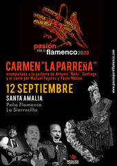 cartel_carmen_la_parreña.jpg