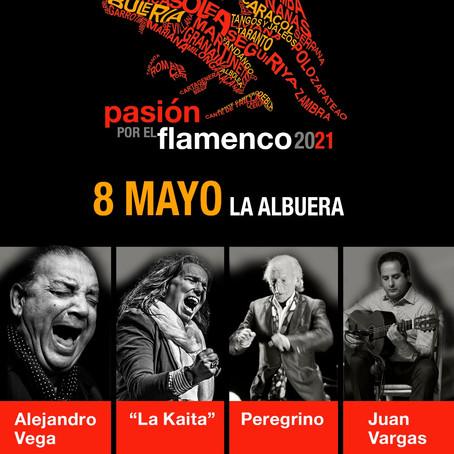 Comienza Pasión por el Flamenco