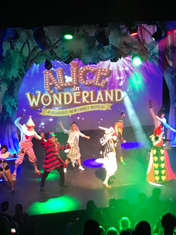 Alice in wonderland 31.03.18
