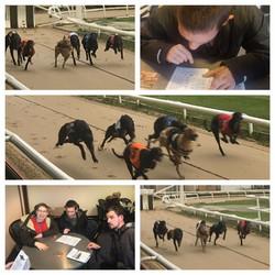 Greyhound racing 31.04.18