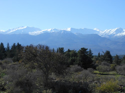 Our view of the White Mountains