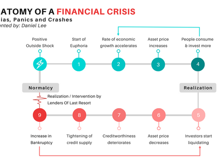 Anatomy of a financial crisis and what you need to know about it
