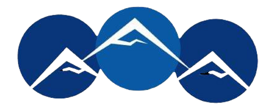 NWMS Logo copy.png