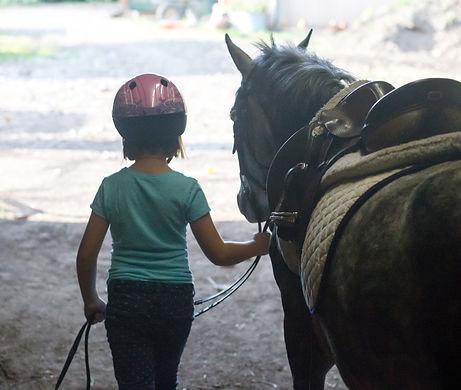 Riding Camp at Liberty Farm