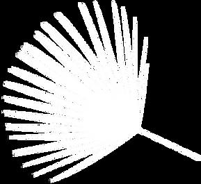 palm-leaf-silhouette-000000-xl 8.png