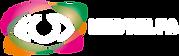logo-hudtelfa-vetor.png
