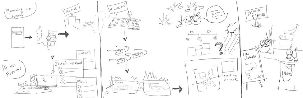 storyboard for FV_edited.jpg