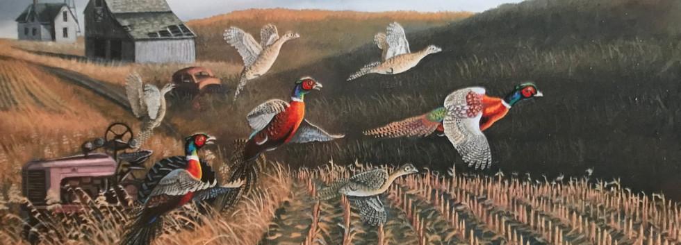 Praire Birds