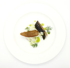 Fennel and lime cured mackerel