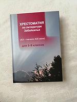 5 стихов Бабожена в региональном учебнике