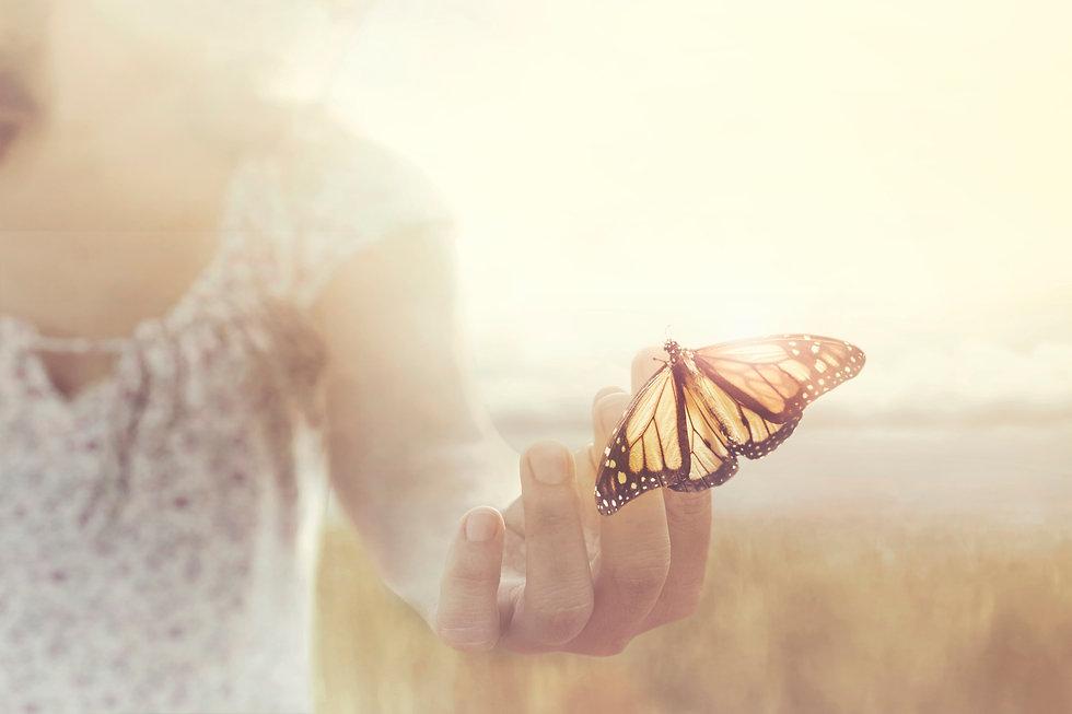 SIZED butterfly.jpg