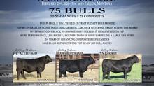 Mark your calendar for February 23, 2020 - 3PM MST - Fallon, Montana