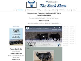 Watch the 2020 Bull Videos online...