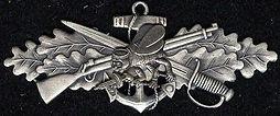 Seabee Combat Warfare pin Sean Rigg Stay Vigilant Texas LTC Instructor