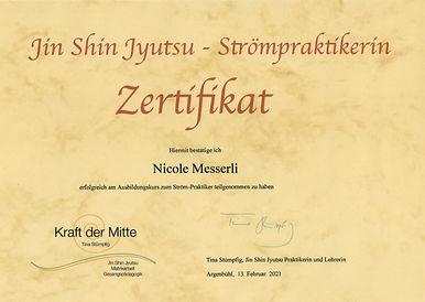 Zertifikat Ström-Praktiker.jpeg