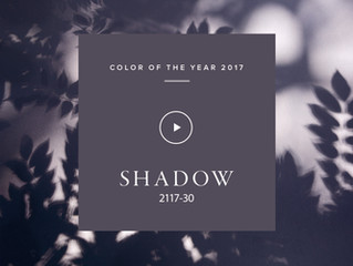 Shadow for 2017