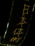 ceinture noire Nihon taijitsu