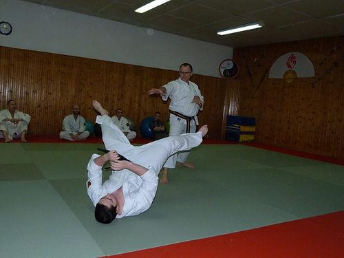 self défense et projection nihon taijitsu ITHEAM