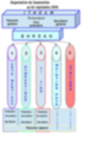 organisation ITHEAM