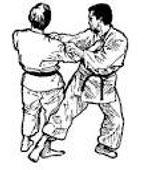 projection 1  nihon tai jitsu
