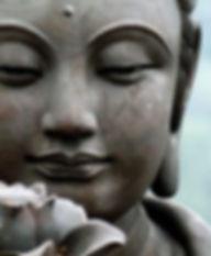 buddha-lotus.jpeg