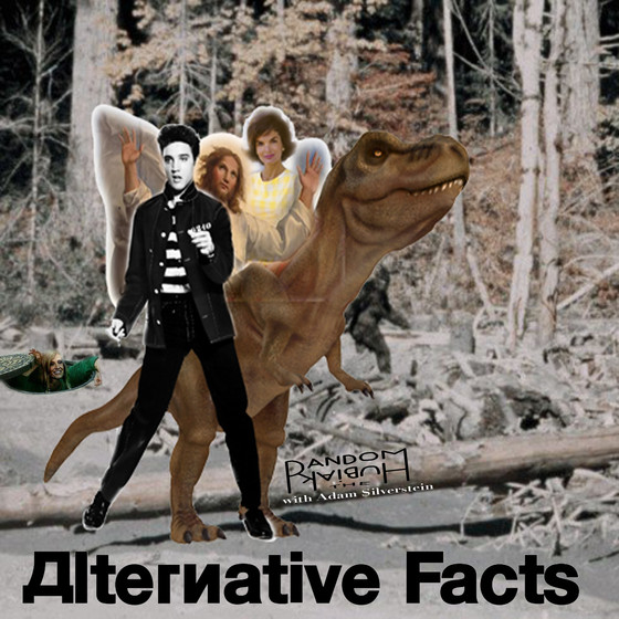 Alternative Facts (reposted from Facebook)