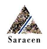 Saracen-logo-RamesysGlobal.jpg