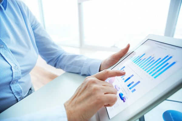 Budgeting and Forecasting Solutions - Ramesys Global