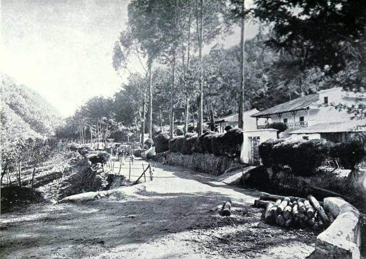 San Rafael 1888