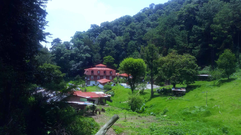 San Rafael 2017