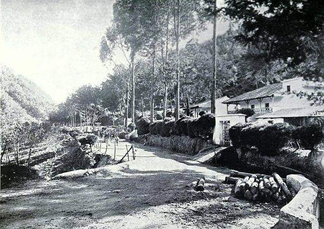 San Rafael historicaC.jpeg