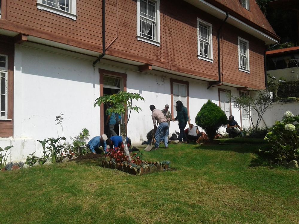Plantación de hortensias por empleados de -IDESAC y FUNDAECO-