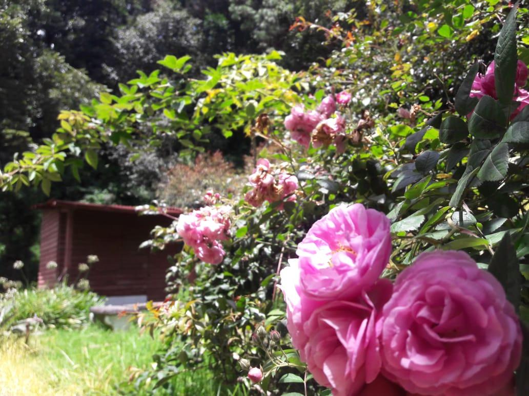 Finca San Rafael las Hortensias
