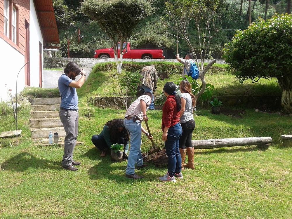 Plantación de hortensias por empleados de -FUNDAECO-