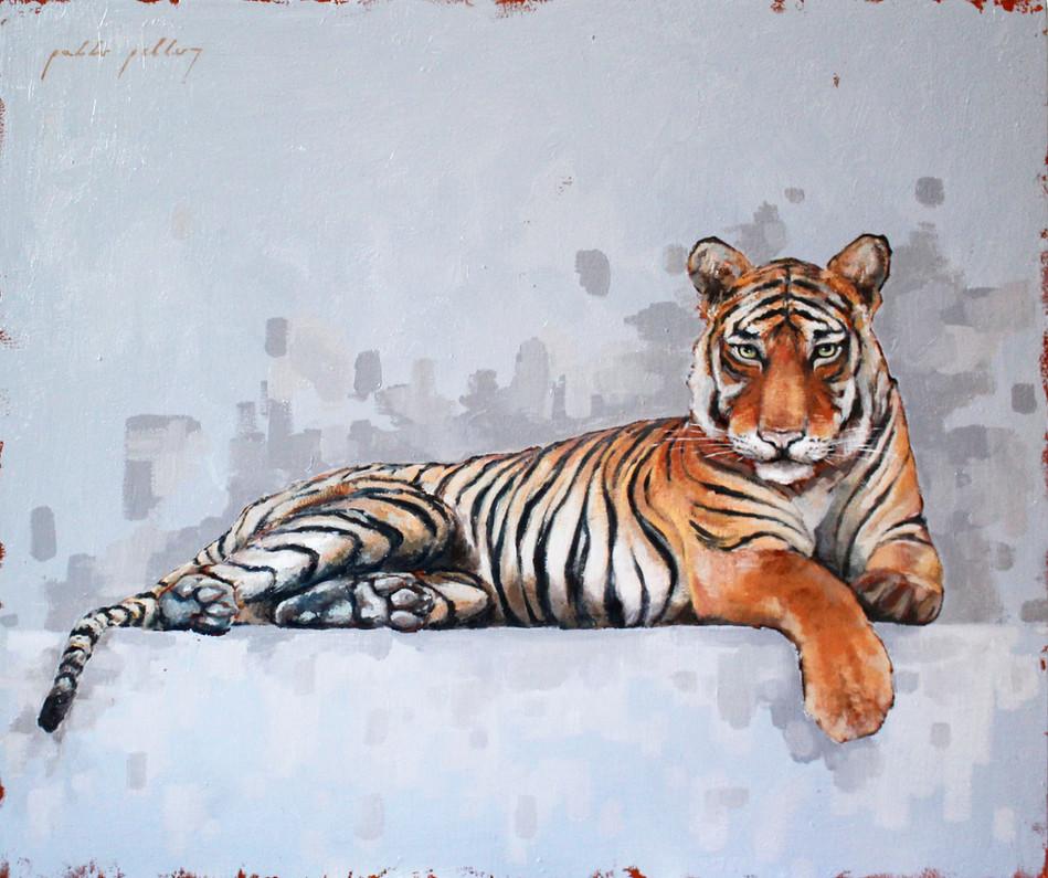 """Tigre tumbado"""